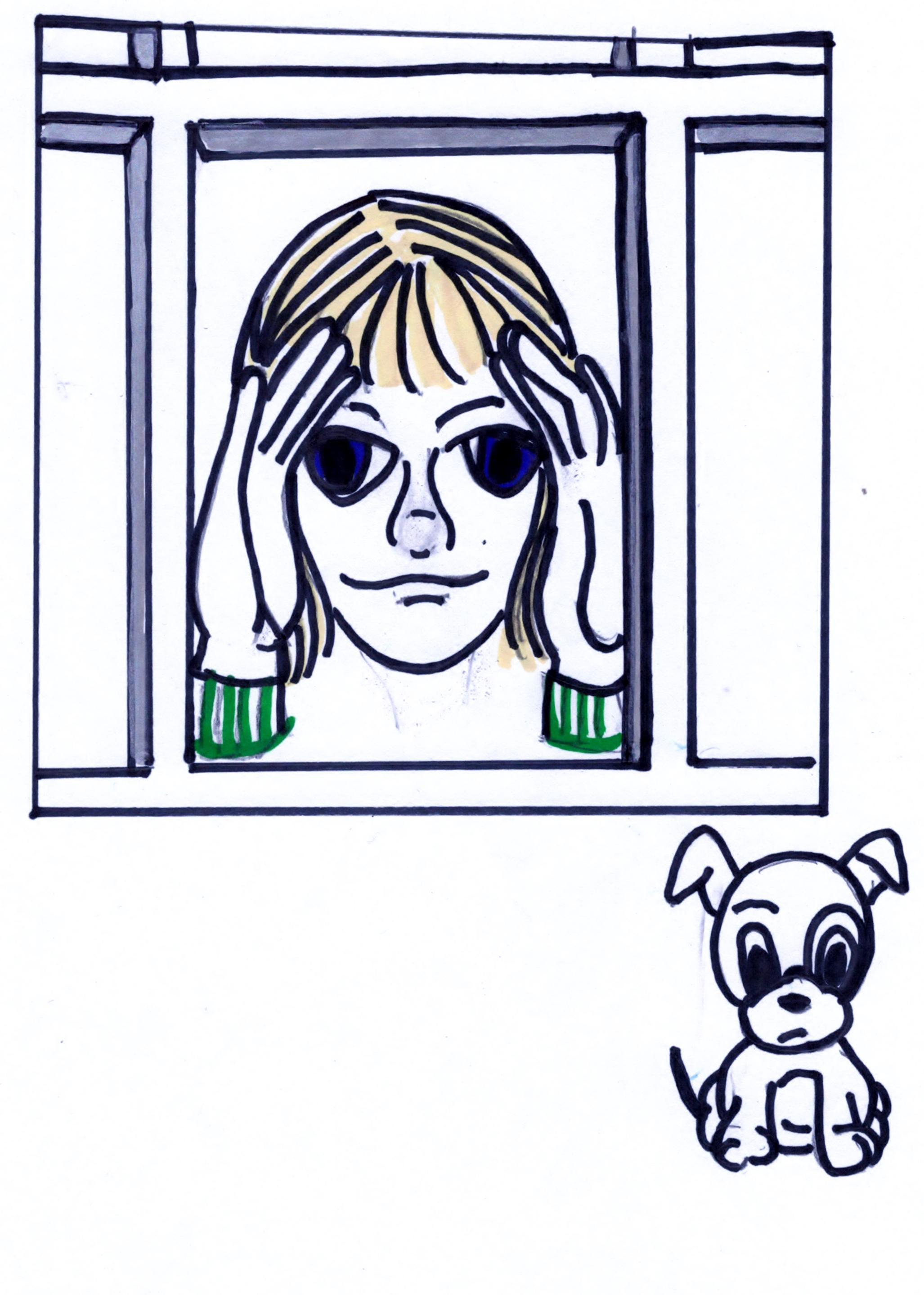 WINDOW PEEPER DOG LICENSE